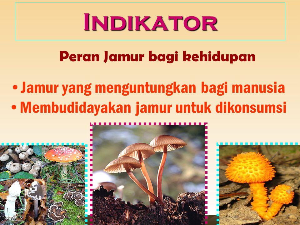 Kompetensi Dasar : Mendeskripsikan dan mengkomunikasikan ciri-ciri kingdom Plantae dan peranannya bagi kehidupan
