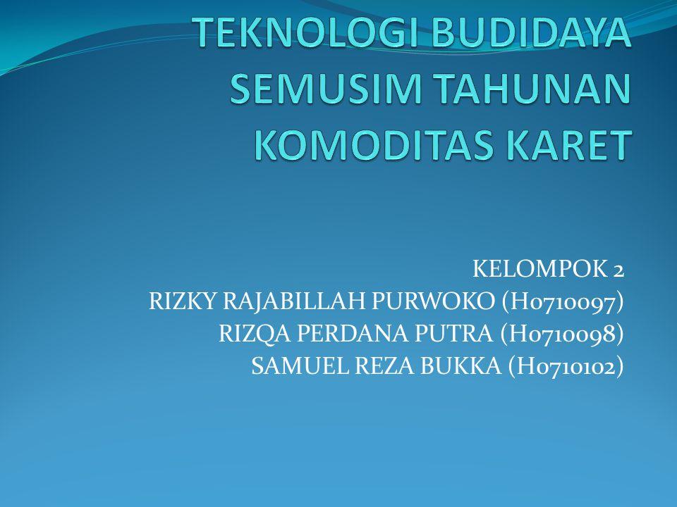 KELOMPOK 2 RIZKY RAJABILLAH PURWOKO (H0710097) RIZQA PERDANA PUTRA (H0710098) SAMUEL REZA BUKKA (H0710102)