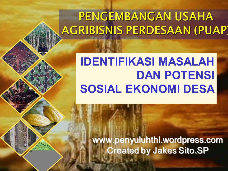 PENGEMBANGAN USAHA AGRIBISNIS PERDESAAN (PUAP) www.penyuluhthl.wordpress.com Created by Jakes Sito.SP IDENTIFIKASI MASALAH DAN POTENSI SOSIAL EKONOMI DESA