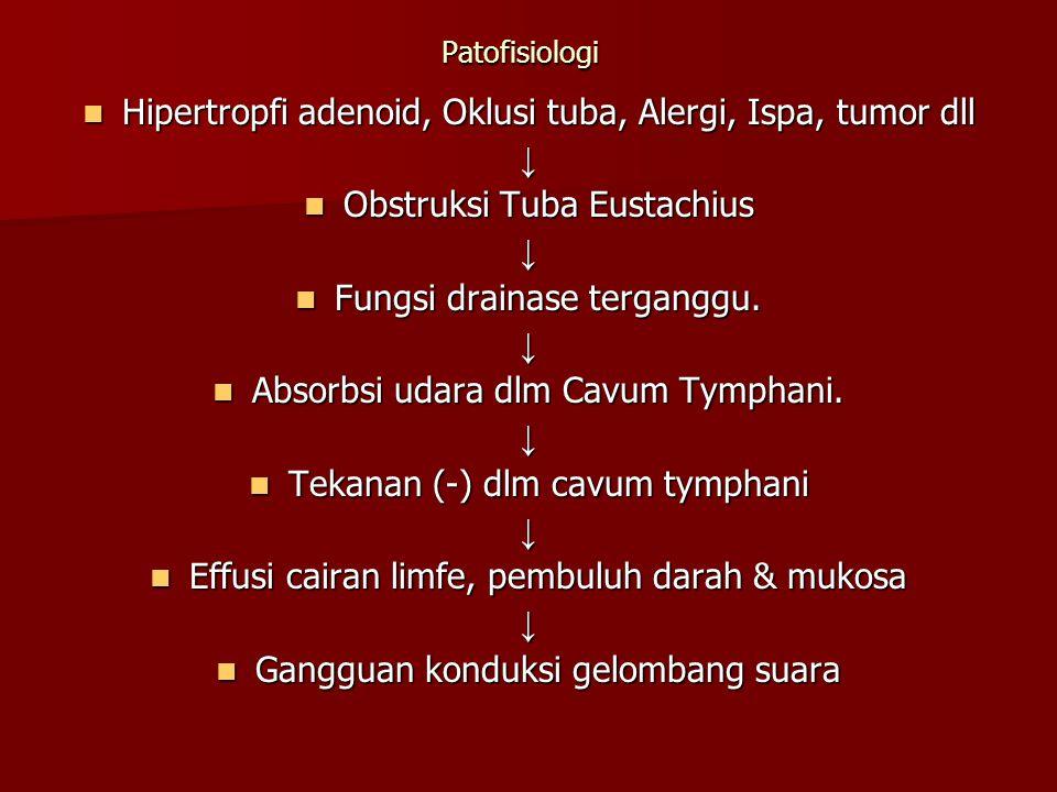 Patofisiologi Hipertropfi adenoid, Oklusi tuba, Alergi, Ispa, tumor dll Hipertropfi adenoid, Oklusi tuba, Alergi, Ispa, tumor dll↓ Obstruksi Tuba Eust