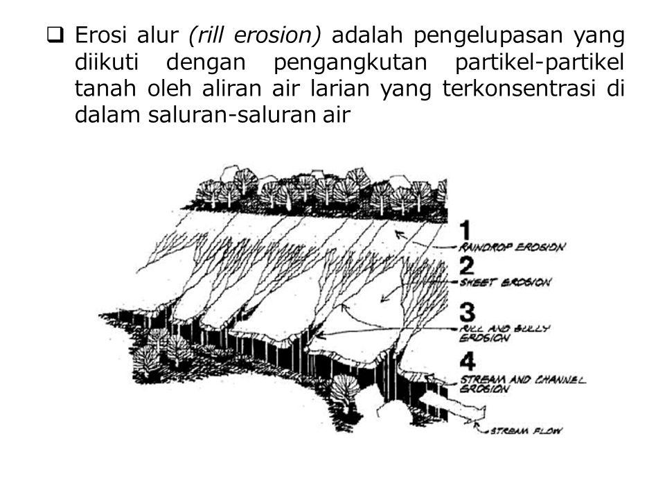  Erosi alur (rill erosion) adalah pengelupasan yang diikuti dengan pengangkutan partikel-partikel tanah oleh aliran air larian yang terkonsentrasi di