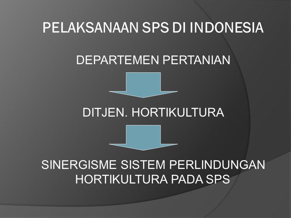 PELAKSANAAN SPS DI INDONESIA DEPARTEMEN PERTANIAN DITJEN. HORTIKULTURA SINERGISME SISTEM PERLINDUNGAN HORTIKULTURA PADA SPS