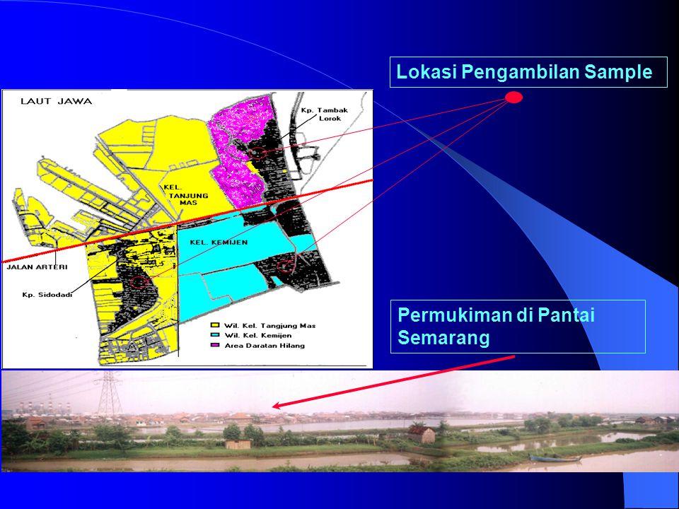 Kawasan Rawan Genangan di Semarang Lokasi Study