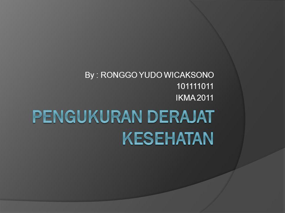 By : RONGGO YUDO WICAKSONO 101111011 IKMA 2011