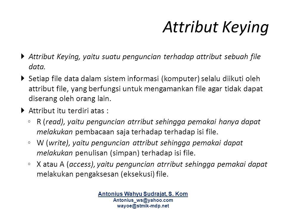 Attribut Keying  Attribut Keying, yaitu suatu penguncian terhadap attribut sebuah file data.  Setiap file data dalam sistem informasi (komputer) sel