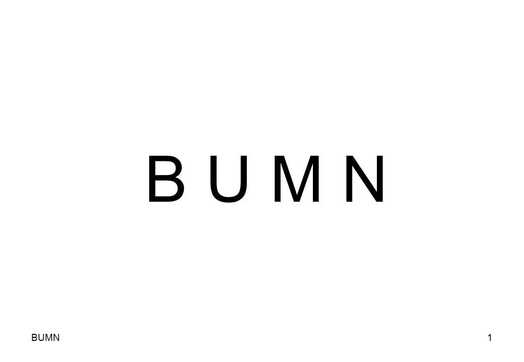 BUMN1