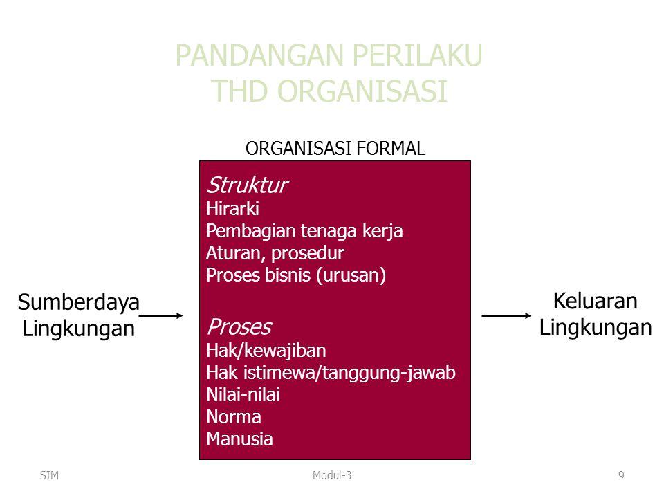 PANDANGAN PERILAKU THD ORGANISASI Struktur Hirarki Pembagian tenaga kerja Aturan, prosedur Proses bisnis (urusan) Proses Hak/kewajiban Hak istimewa/ta