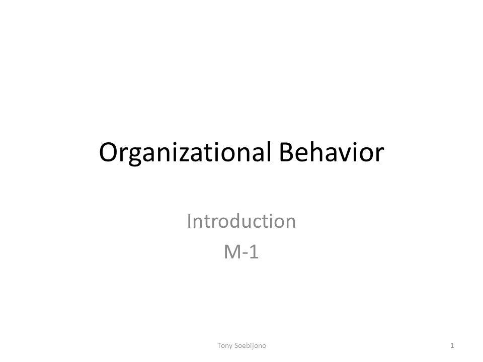 Organizational Behavior Introduction M-1 1Tony Soebijono
