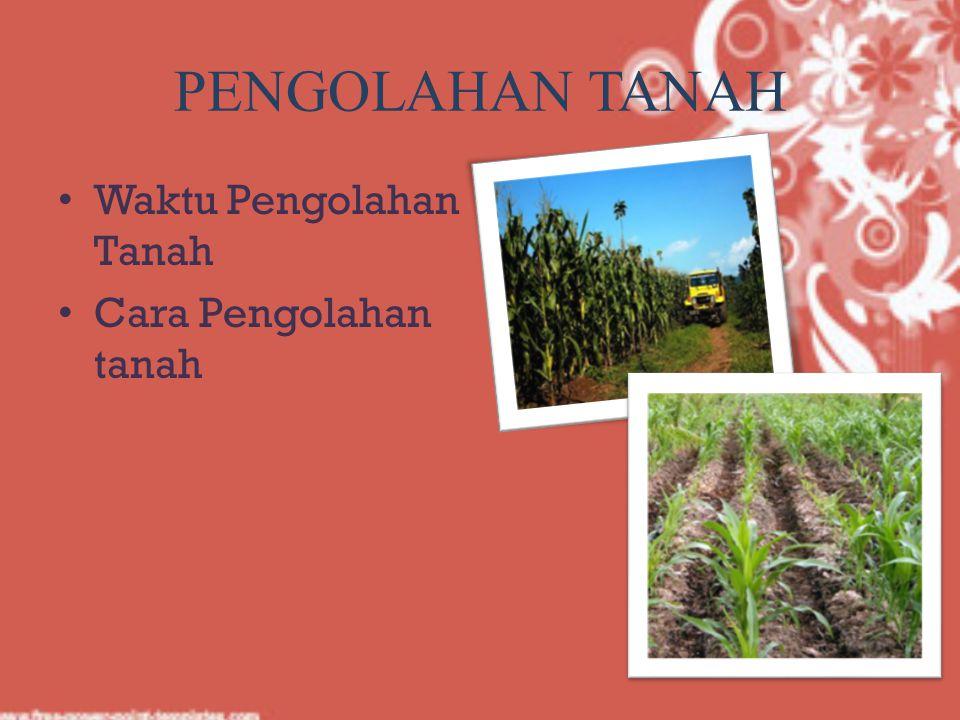 PENGOLAHAN TANAH Waktu Pengolahan Tanah Cara Pengolahan tanah
