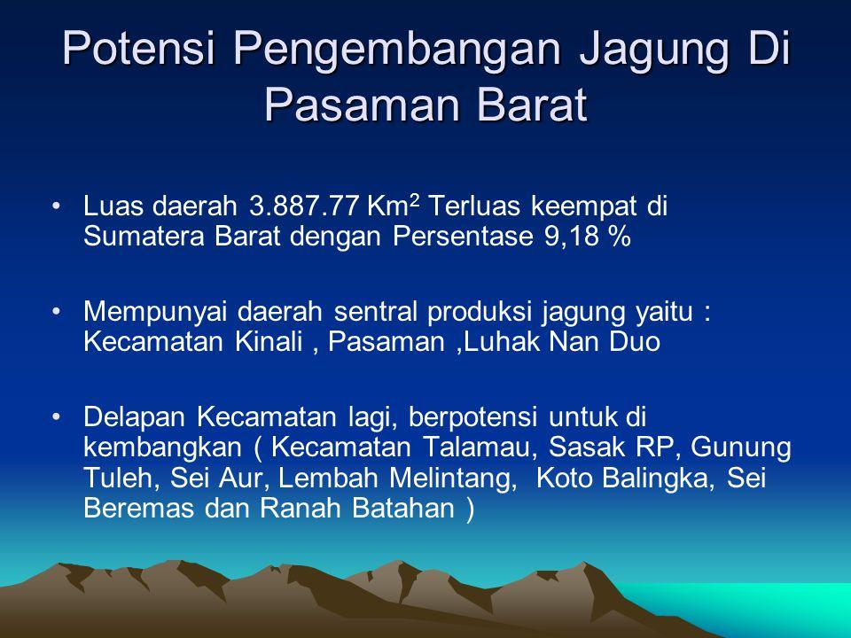 Potensi Pengembangan Jagung Di Pasaman Barat Luas daerah 3.887.77 Km 2 Terluas keempat di Sumatera Barat dengan Persentase 9,18 % Mempunyai daerah sentral produksi jagung yaitu : Kecamatan Kinali, Pasaman,Luhak Nan Duo Delapan Kecamatan lagi, berpotensi untuk di kembangkan ( Kecamatan Talamau, Sasak RP, Gunung Tuleh, Sei Aur, Lembah Melintang, Koto Balingka, Sei Beremas dan Ranah Batahan )