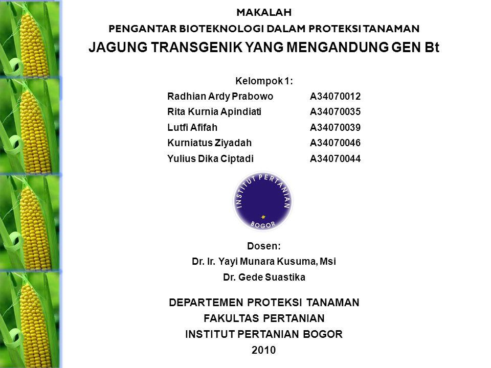 MAKALAH PENGANTAR BIOTEKNOLOGI DALAM PROTEKSI TANAMAN JAGUNG TRANSGENIK YANG MENGANDUNG GEN Bt Kelompok 1: Radhian Ardy PrabowoA34070012 Rita Kurnia A