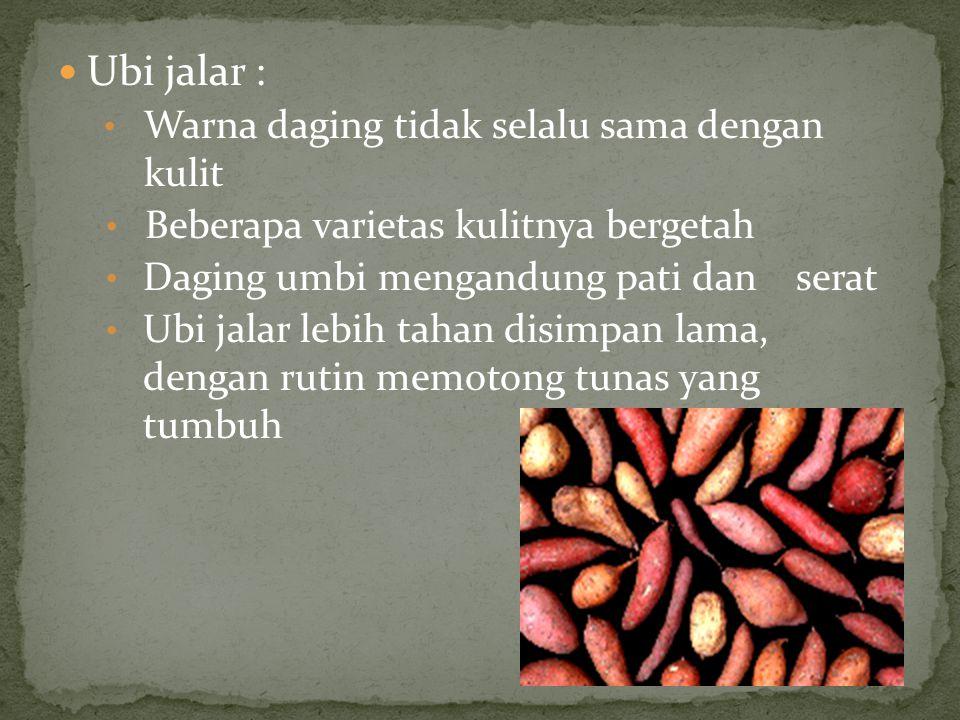 Ubi jalar : Warna daging tidak selalu sama dengan kulit Beberapa varietas kulitnya bergetah Daging umbi mengandung pati dan serat Ubi jalar lebih taha