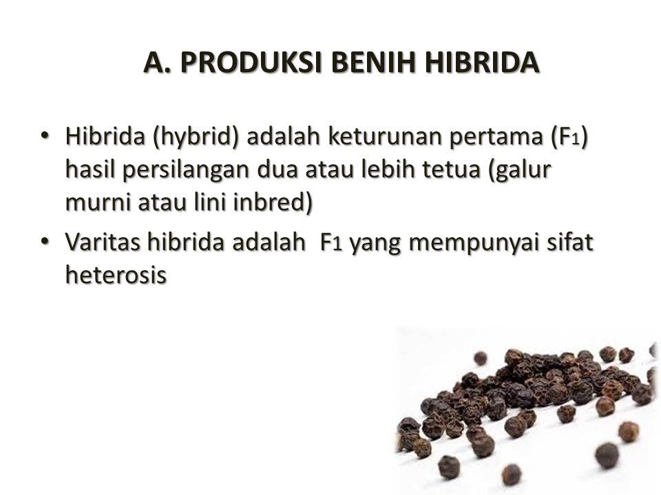 A. PRODUKSI BENIH HIBRIDA Hibrida (hybrid) adalah keturunan pertama (F 1 ) hasil persilangan dua atau lebih tetua (galur murni atau lini inbred) Hibri