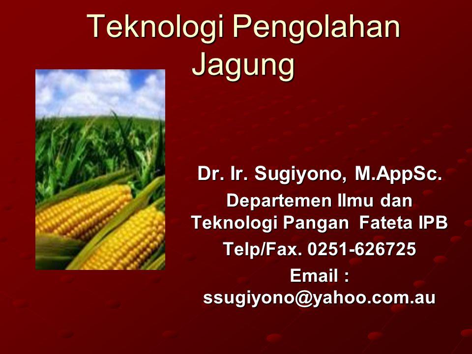 Teknologi Pengolahan Jagung Dr. Ir. Sugiyono, M.AppSc. Departemen Ilmu dan Teknologi Pangan Fateta IPB Telp/Fax. 0251-626725 Email : ssugiyono@yahoo.c