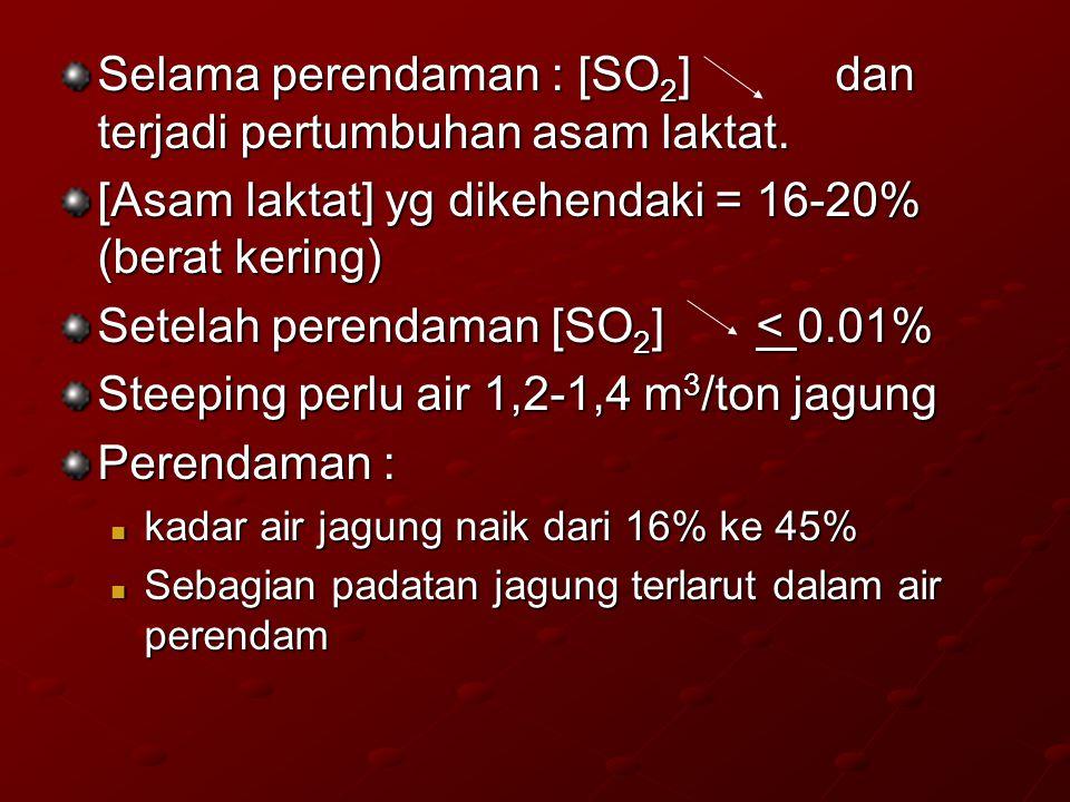 Selama perendaman : [SO 2 ] dan terjadi pertumbuhan asam laktat. [Asam laktat] yg dikehendaki = 16-20% (berat kering) Setelah perendaman [SO 2 ] < 0.0