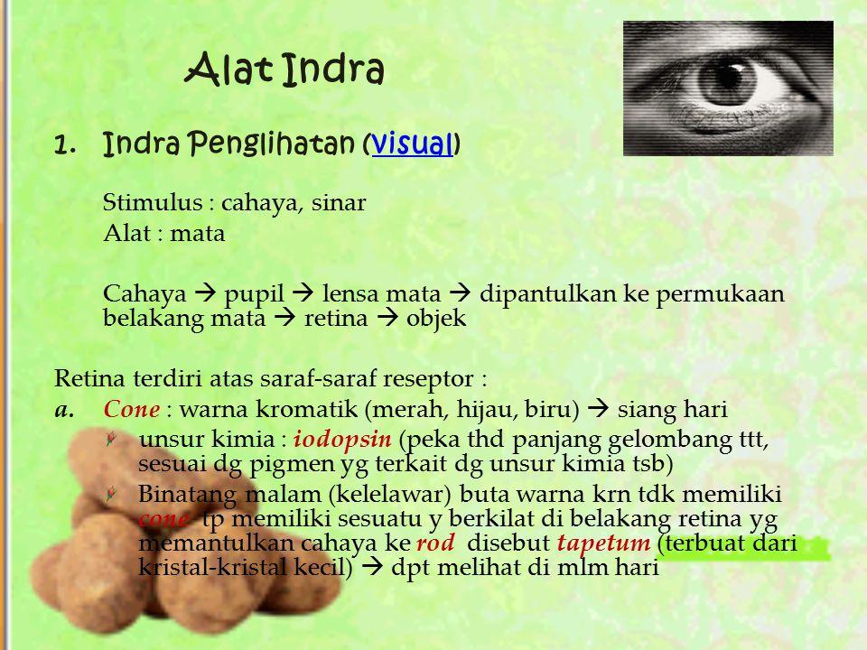 Alat Indra 1.Indra Penglihatan (visual)visual Stimulus : cahaya, sinar Alat : mata Cahaya  pupil  lensa mata  dipantulkan ke permukaan belakang mat