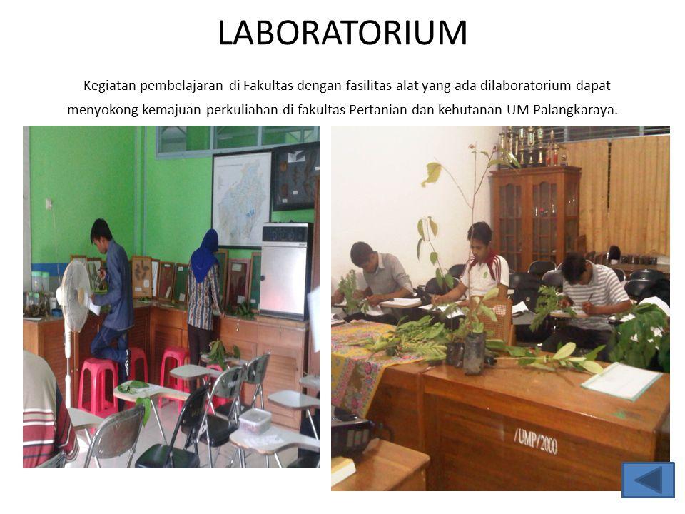 LABORATORIUM Kegiatan pembelajaran di Fakultas dengan fasilitas alat yang ada dilaboratorium dapat menyokong kemajuan perkuliahan di fakultas Pertanian dan kehutanan UM Palangkaraya.