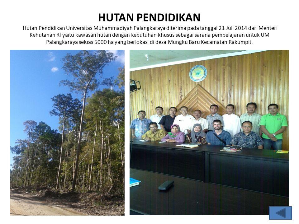 HUTAN PENDIDIKAN Hutan Pendidikan Universitas Muhammadiyah Palangkaraya diterima pada tanggal 21 Juli 2014 dari Menteri Kehutanan RI yaitu kawasan hutan dengan kebutuhan khusus sebagai sarana pembelajaran untuk UM Palangkaraya seluas 5000 ha yang berlokasi di desa Mungku Baru Kecamatan Rakumpit.