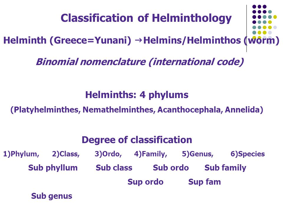 Classification of Helminthology Helminth (Greece=Yunani)  Helmins/Helminthos (worm) Binomial nomenclature (international code) Helminths: 4 phylums (