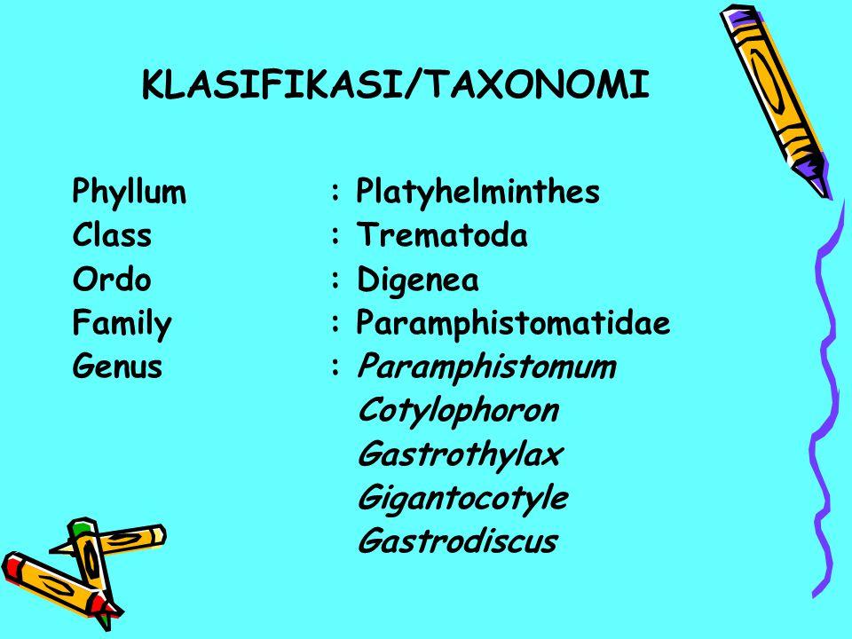 KLASIFIKASI/TAXONOMI Phyllum: Platyhelminthes Class: Trematoda Ordo: Digenea Family: Paramphistomatidae Genus: Paramphistomum Cotylophoron Gastrothyla