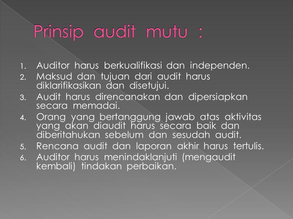 1. Auditor harus berkualifikasi dan independen. 2. Maksud dan tujuan dari audit harus diklarifikasikan dan disetujui. 3. Audit harus direncanakan dan