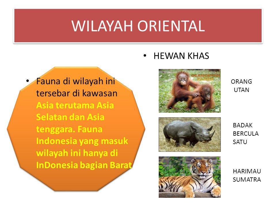 Fauna di wilayah ini tersebar di kawasan Asia terutama Asia Selatan dan Asia tenggara. Fauna Indonesia yang masuk wilayah ini hanya di InDonesia bagia