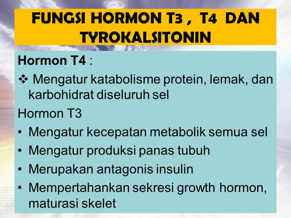 FUNGSI HORMON T3, T4 DAN TYROKALSITONIN Hormon T4 :  Mengatur katabolisme protein, lemak, dan karbohidrat diseluruh sel Hormon T3 Mengatur kecepatan