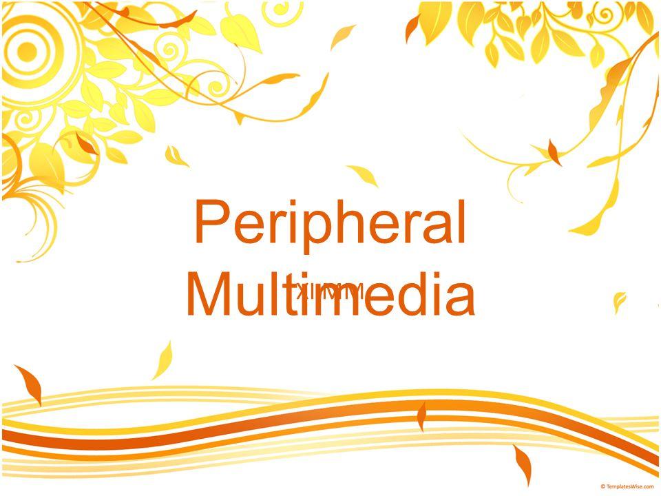 Peripheral Multimedia XI MM