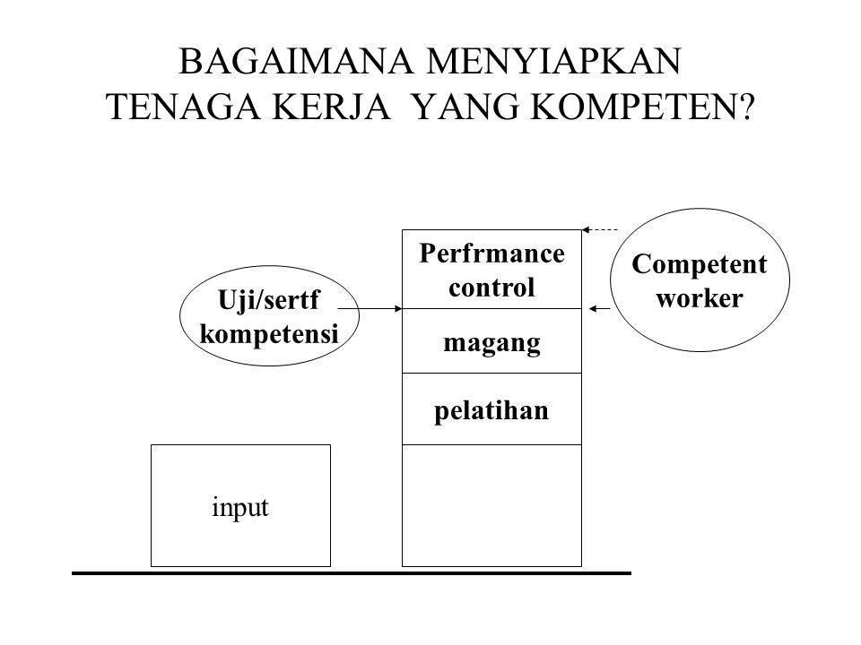 ISU KOMPETENSI UU 13/th.2003 Hal Ketenagakerjaan pasal 42: Setiap TKA yang berada di Indonesia harus bekerja pada KOMPETENSINYA I Apa itu kompetensi?
