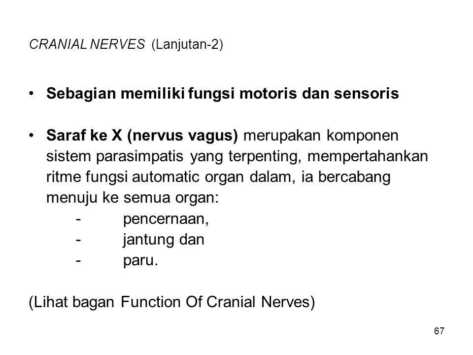 67 CRANIAL NERVES (Lanjutan-2) Sebagian memiliki fungsi motoris dan sensoris Saraf ke X (nervus vagus) merupakan komponen sistem parasimpatis yang ter