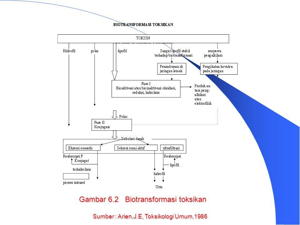 MEKANISME BIOTRANSFORMASI MELIPUTI 2 REAKSI : REAKSI FASA I DAN REAKSI FASA II 1. REAKSI FASA I ATAU REAKSI FUNGSIONALISASI/ MEMASUKKAN GUGUS FUNGSION
