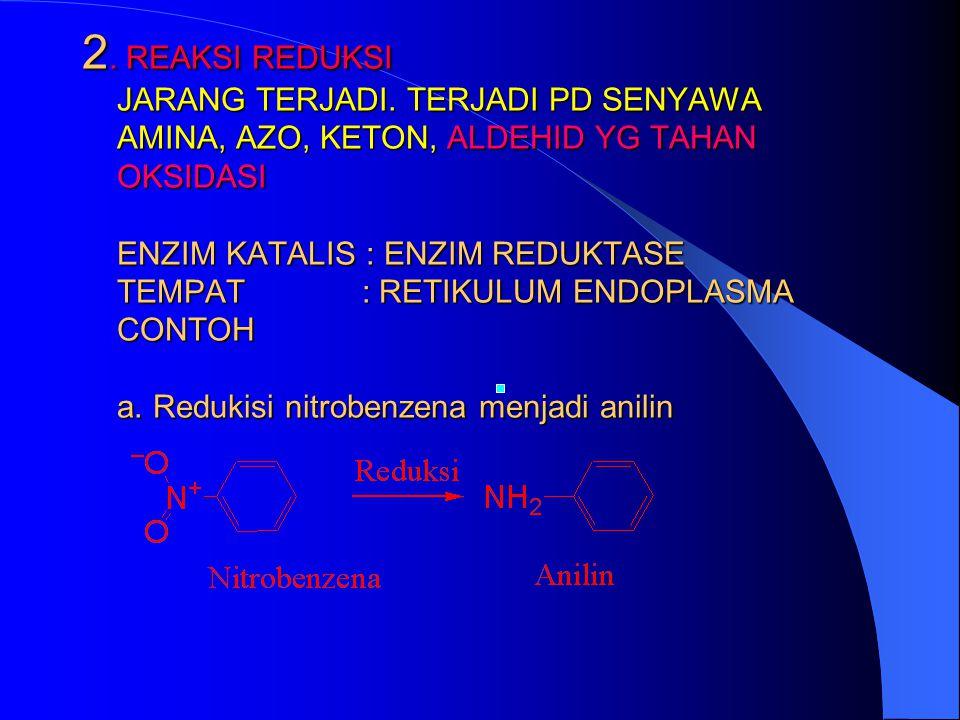 c) Oksidasi Amin tersier menjadi nitroso c) Oksidasi Amin tersier menjadi nitroso