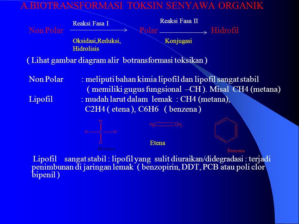 A.BIOTRANSFORMASI TOKSIN SENYAWA ORGANIK Non Polar Polar Hidrofil ( Lihat gambar diagram alir botransformasi toksikan ) Non Polar : meliputi bahan kimia lipofil dan lipofil sangat stabil ( memiliki gugus fungsional –CH ).