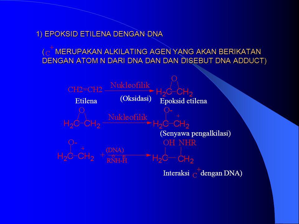 D. GANGGUAN PADA SINTESA DNA DAN RNA GANGGUAN INI DISEBABKAN OLEH INTERAKSI DNA/RNA DENGAN SENYAWA PRODUK ANTARA PENGALKILASI YANG ELEKTROFILIK SEPERT