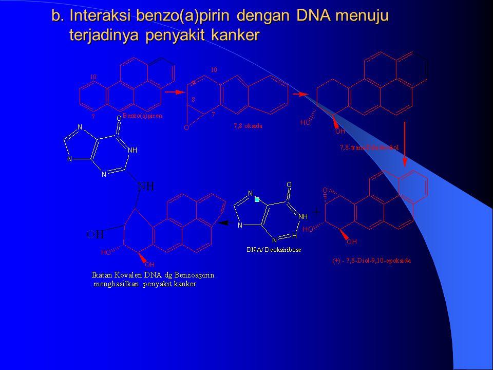 1) EPOKSID ETILENA DENGAN DNA ( MERUPAKAN ALKILATING AGEN YANG AKAN BERIKATAN DENGAN ATOM N DARI DNA DAN DAN DISEBUT DNA ADDUCT) 1) EPOKSID ETILENA DE