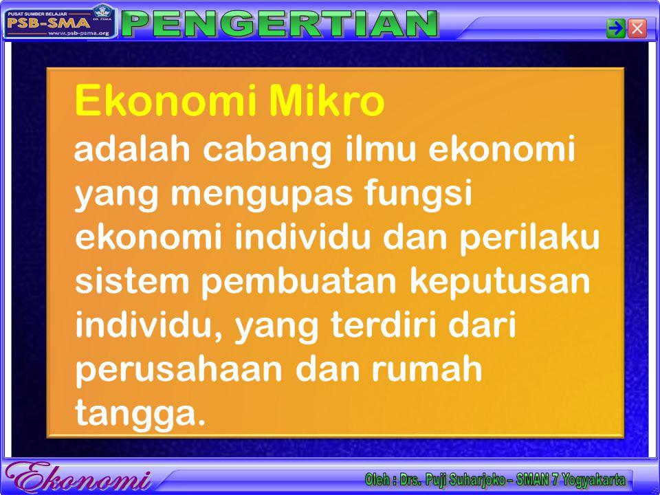 Ekonomi Mikro adalah cabang ilmu ekonomi yang mengupas fungsi ekonomi individu dan perilaku sistem pembuatan keputusan individu, yang terdiri dari perusahaan dan rumah tangga.