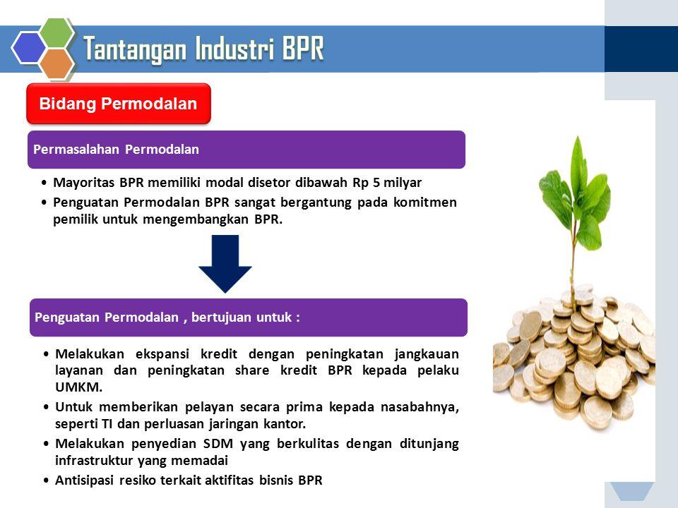 Bidang Permodalan Permasalahan Permodalan Mayoritas BPR memiliki modal disetor dibawah Rp 5 milyar Penguatan Permodalan BPR sangat bergantung pada kom