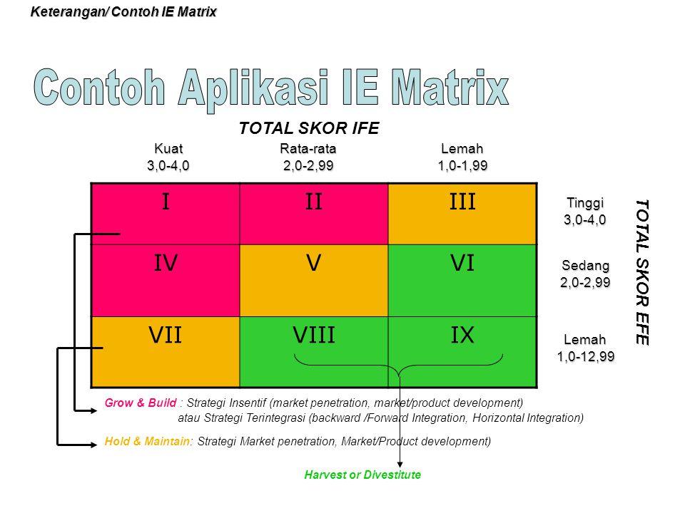 Keterangan/ Contoh IE Matrix IIIIII IVVVI VIIVIIIIX Kuat3,0-4,0Rata-rata2,0-2,99Lemah1,0-1,99 Tinggi3,0-4,0 Sedang2,0-2,99 Lemah1,0-12,99 TOTAL SKOR I