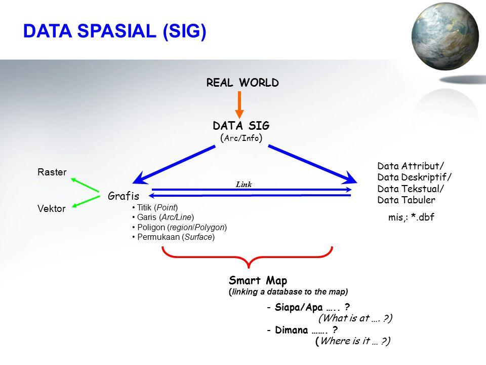 DATA SIG ( Arc/Info ) Link REAL WORLD - Siapa/Apa …..