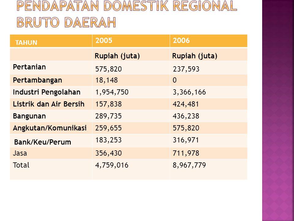 TAHUN 20052006 Rupiah (juta) Pertanian 575,820 237,593 Pertambangan18,1480 Industri Pengolahan1,954,7503,366,166 Listrik dan Air Bersih157,838424,481