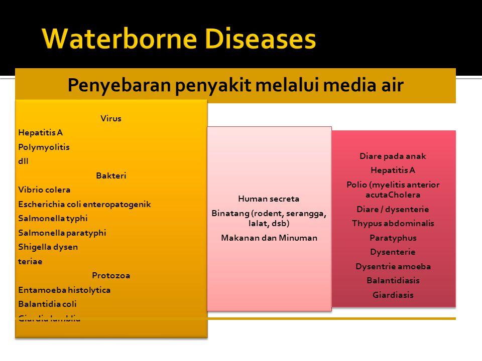 Penyebaran penyakit melalui media air Virus Hepatitis A Polymyolitis dll Bakteri Vibrio colera Escherichia coli enteropatogenik Salmonella typhi Salmo