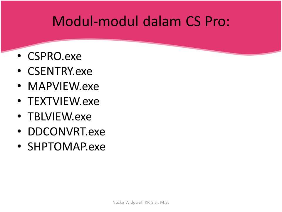 Modul-modul dalam CS Pro: CSPRO.exe CSENTRY.exe MAPVIEW.exe TEXTVIEW.exe TBLVIEW.exe DDCONVRT.exe SHPTOMAP.exe Nucke Widowati KP, S.Si, M.Sc