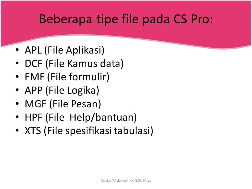 Beberapa tipe file pada CS Pro: APL (File Aplikasi) DCF (File Kamus data) FMF (File formulir) APP (File Logika) MGF (File Pesan) HPF (File Help/bantua
