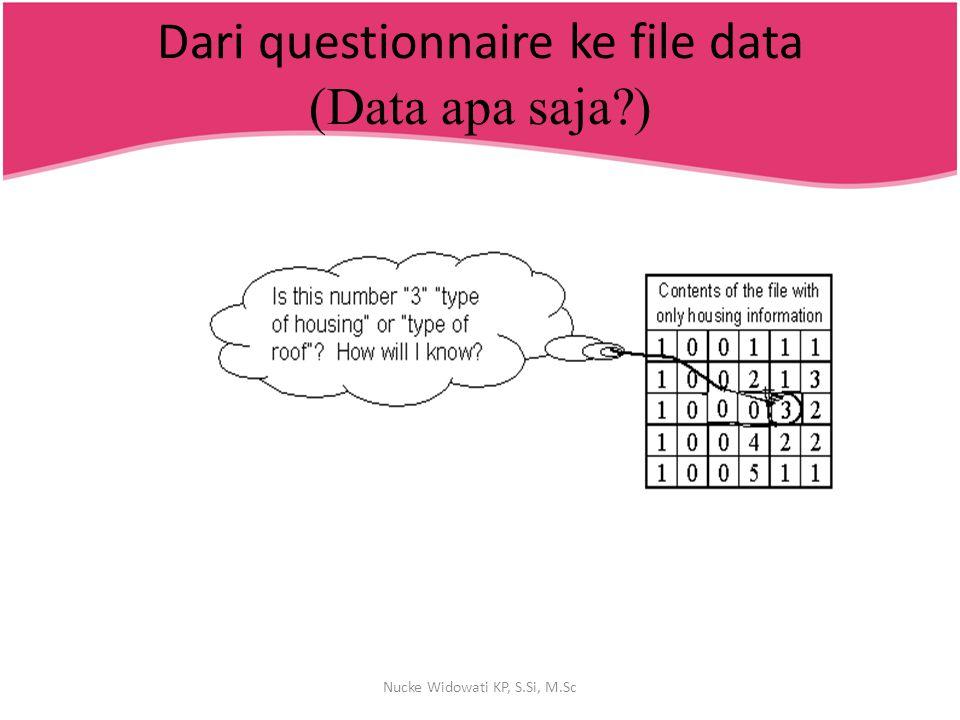 Dari questionnaire ke file data (Data apa saja?) Nucke Widowati KP, S.Si, M.Sc