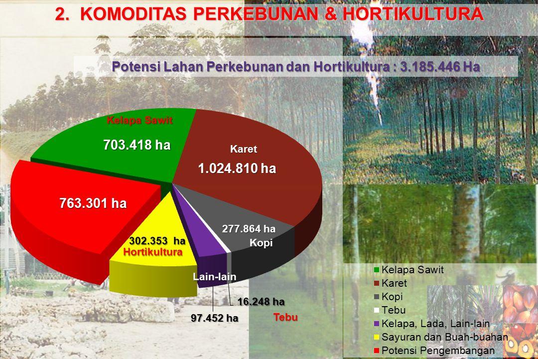 2. KOMODITAS PERKEBUNAN & HORTIKULTURA Potensi Lahan Perkebunan dan Hortikultura : 3.185.446 Ha Kelapa Sawit Karet Kopi Hortikultura Lain-lain