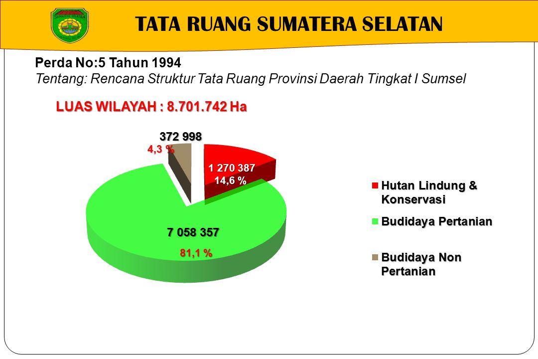 TATA RUANG SUMATERA SELATAN Perda No:5 Tahun 1994 Tentang: Rencana Struktur Tata Ruang Provinsi Daerah Tingkat I Sumsel LUAS WILAYAH : 8.701.742 Ha 14