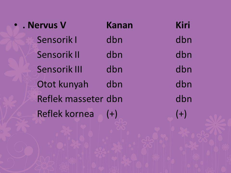 . Nervus VKananKiri Sensorik Idbndbn Sensorik IIdbndbn Sensorik IIIdbndbn Otot kunyahdbndbn Reflek masseterdbndbn Reflek kornea(+)(+)