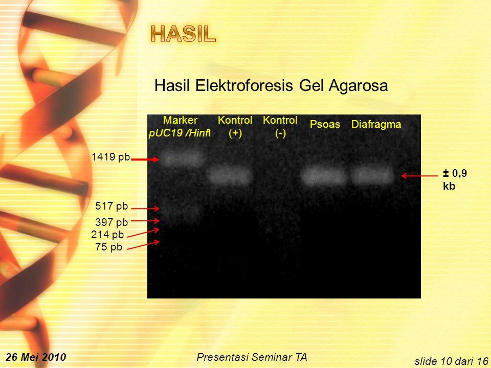 Hasil Elektroforesis Gel Agarosa Marker pUC19 /HinfI Kontrol (+) Kontrol (-) PsoasDiafragma 1419 pb 517 pb 397 pb 214 pb 75 pb ± 0,9 kb slide 10 dari 16 26 Mei 2010 Presentasi Seminar TA