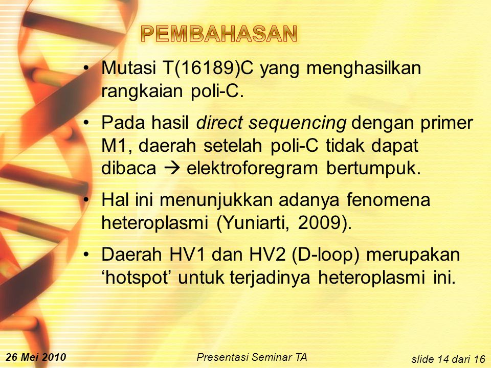 Mutasi T(16189)C yang menghasilkan rangkaian poli-C.