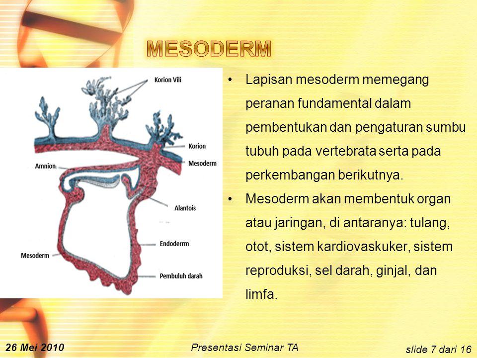 Lapisan mesoderm memegang peranan fundamental dalam pembentukan dan pengaturan sumbu tubuh pada vertebrata serta pada perkembangan berikutnya.